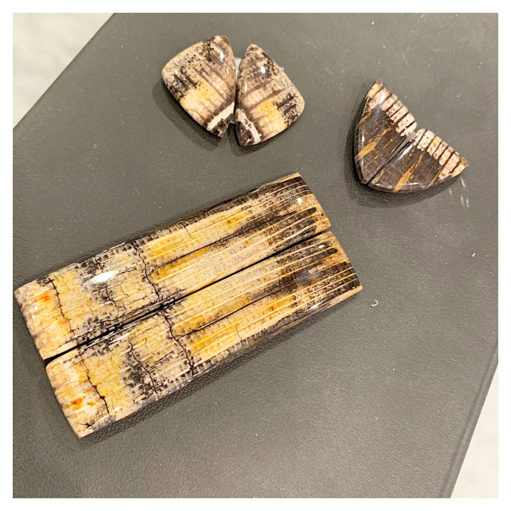 Petrified red oak is a type of petrified wood, and prices per piece start at $150 triple keystone; email glasater@gmail.com for purchase.